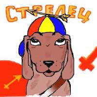 Гороскоп для собак - Стрелец