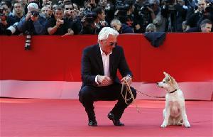 Ричард Гир расстроился из-за японской собаки