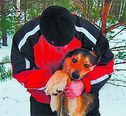 Преданному псу подарили ошейник и утеплили будку (Калуга)