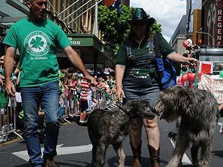 """""""Святой Патрик"""" шагает по планете. Первыми зеленый парад устроили австралийцы."""