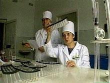 Домашних животных будут проверять на прививки от бешенства на выездах из Москвы