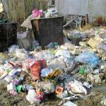 По следу людей, которые мусорят, пустили собак (Украина)