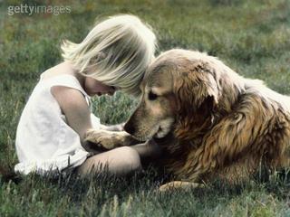 В рамках городской благотворительной акции «Человек собаке друг» в ивановских школах пройдут «Уроки заботы»