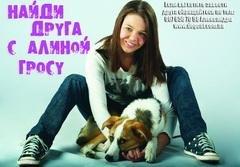 Алина Гросу поможет бездомным собакам (Украина)