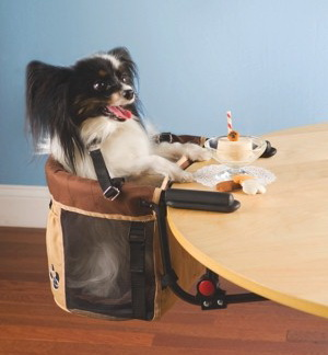 Pet High Chair - обеденный стул для миниатюрного любимца