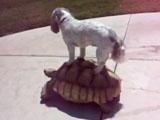 Собака-экстремал катается на «такси с панцирем»