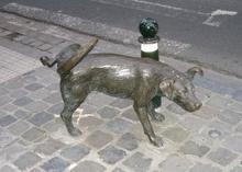 Владельцам собак в Триесте, за «поливание» колес автомобиля их питомцами, грозит штраф от 50 до 300 евро (Италия)