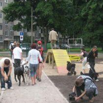 В Харькове появятся специальные площадки для собак