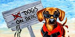 Пляжи для собак открываются в Италии