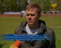 Не просто друг - настоящий профессионал (Новосибирская область)