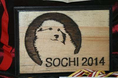 Собака из Зеленогорска претендует на символ Олимпиады в Сочи-2014