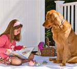 Самый внимательный и благодарный слушатель - собака
