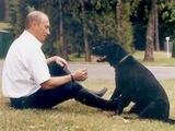 Жители Петербурга снова хотят установить памятник собаке Путина