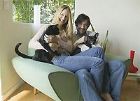 Кошки и собаки научат семейному счастью