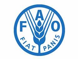 ФАО призывает усилить ветеринарный контроль за заболеваниями животных (Италия)