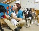 В США появится Диснейленд для животных