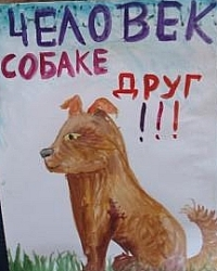 Прокуратура услышала зоозащитников (Казань)