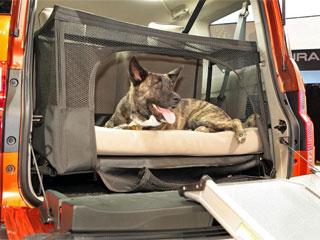 Составлен рейтинг лучших автомобилей для собак