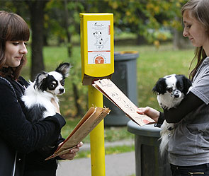 Хозяев собак оснастят совками и пакетами