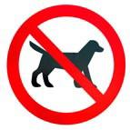 Иран запретил рекламу домашних животных