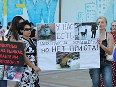 Пикет в защиту бездомных животных прошёл в Краснодаре