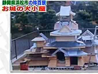 Японец построил замок для своей собаки