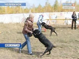 """В Челябинске прошло шоу """"Я и моя собака"""""""