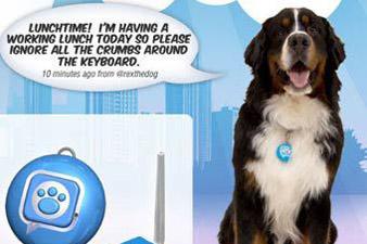 Twitter стал доступен даже собакам