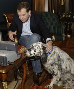 Дмитрий Медведев переродился в собачника