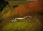 Пахнет сенсацией. Доисторическая белая лошадь на самом деле… собака