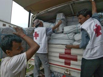 Непальский Красный крест нанял на работу бездомную собаку
