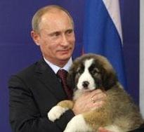 Собаку Путина хотят назвать Балканом