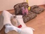 В Екатеринбурге начали делать мебель для собак