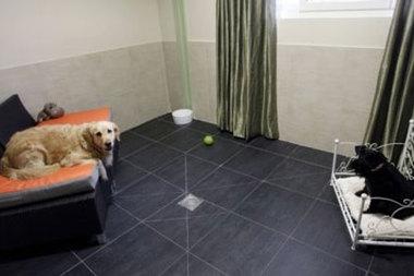 В Париже открыли отель класса люкс для собак