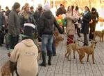 День Святого Патрика отметили в Екатеринбурге