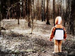 Заблудившегося в лесу четырёхлетнего мальчика всю ночь грела собака (Пермский край)