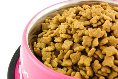 Собачий корм помогает похудеть?
