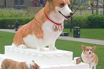 Самый большой торт для собак