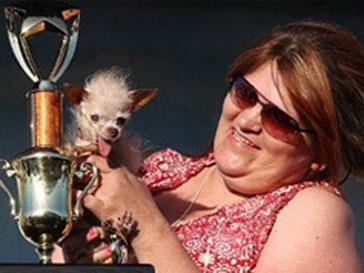 ВСША прошёл конкурс название самой уродливой собаки вмире