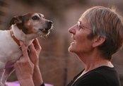 Собака спаслась от верной гибели, спев Happy Birthday