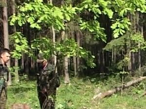 В Брянской области 4-хмесячный щенок лайки помог женщине выжить в лесу