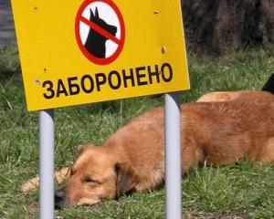 В Киеве построят площадки для выгула собак, которые власти обещали 8 лет