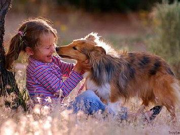 10-летние дети лучше всех понимают собак (Румыния)
