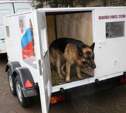 В Башкирии для полицейских служебных собак создали вольер на колесах