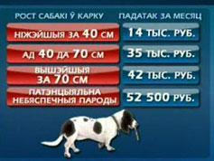 Владельцы собак заплатят в этом месяце больше (Беларусь, Минск)