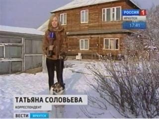 В Иркутске появилась справочная служба по розыску домашних животных