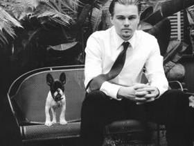 Леонардо ДиКаприо променял друзей на собаку