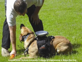 Собаки станут радиоуправляемыми