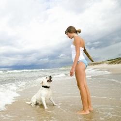 В Польше создадут пляж для собак