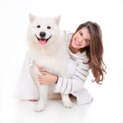 Порода собаки говорит о характере её владельца (Великобритания)